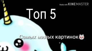 Топ 5 :Самых милых картинок