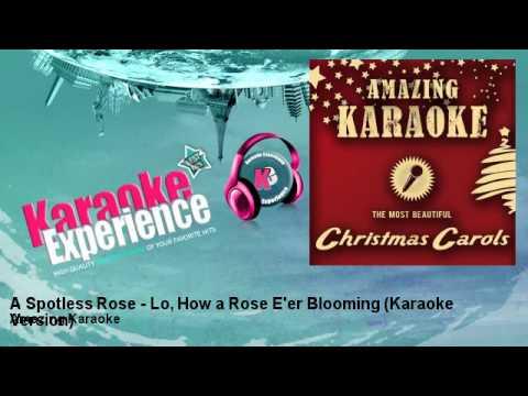 Amazing Karaoke - A Spotless Rose - Lo, How a Rose E'er Blooming (Karaoke Version)