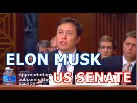 Elon Musk US Senate Hearing on National Security Space Launch Programs - SpaceX