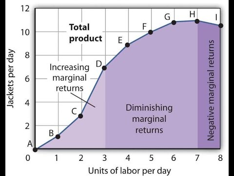 law of diminishing returns example