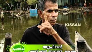 Feature story on Cage fish culture in Ashtamudi kayal, Kollam