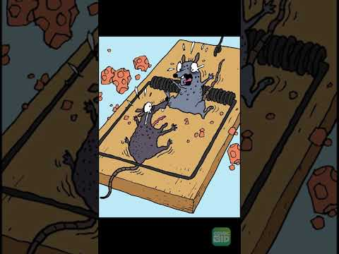 Download Mouse Trap - Humorror #Shorts