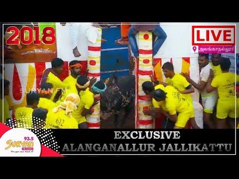 Alanganallur Jallikattu LIVE | 2018