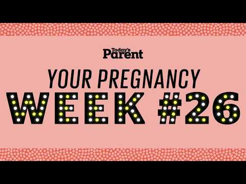 Your pregnancy: 26 weeks