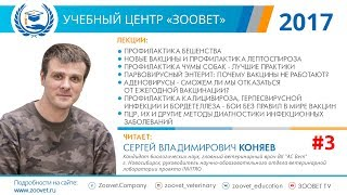 C. В. Коняев в УЦ «Зоовет»   Профилактика лептоспироза, чума собак   ч. 3/5