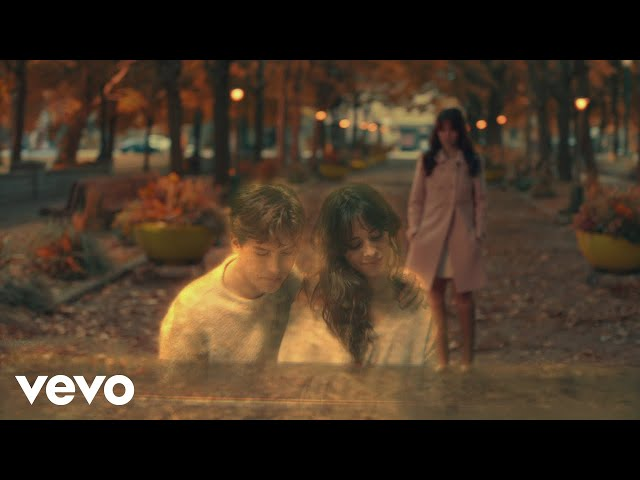 Camila Cabello - Consequences