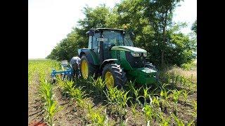 Kukorica Kultivátorozás {2017} John Deere 6090 Rc+ Omikron, IFA l60