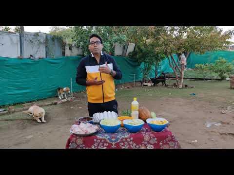 HOMEMADE + HEALTHY DOG FOOD RECIPE / WINTER DOG FOOD FOR YOUR DOG/ Doggyz World