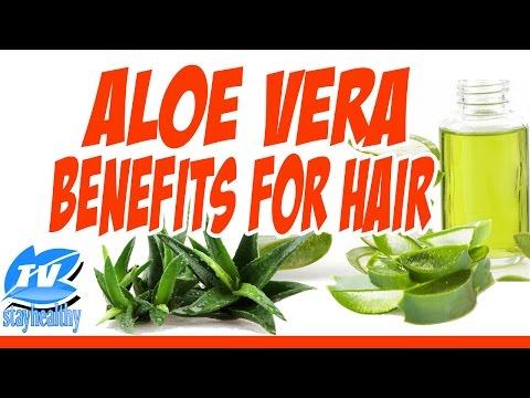 Thinning Hair?  Hair Loss? Aloe Vera to Cure Hair Loss! - StayHealthyTV aloe vera gel natural hair