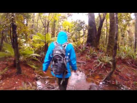 Tramp to the Roaring Stag (Tararua Ranges)