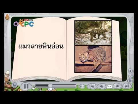 วิทยาศาสตร์ ป.3 - สัตว์ป่าสงวน [7/80]