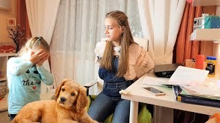 Милана мешает Лике делать уроки и что сделала Лика? Видео для детей