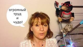 176. Уроки Ангелов. ответ. Беспокойство беременной барышни /Лена Воронова