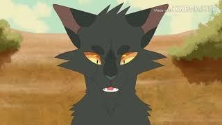 """Коты-Воители. Кленовница ,,Дочь зла"""""""