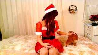 nyako room ♯1 クリスマスイブイブ☆