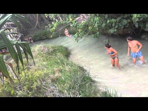 Snake pursues guy on fraser island