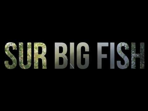 décroche sur Big fish LAKESIDE 5 POWER 650