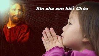 Xin Cho Con Biết Chúa