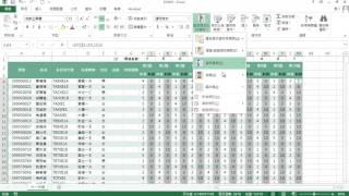 TQC Excel 2016 106 資訊能力檢定 (有聲錄製)