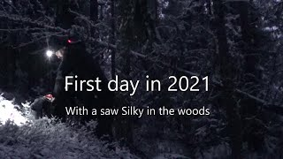 First day in 2021 with a saw silky in the woods