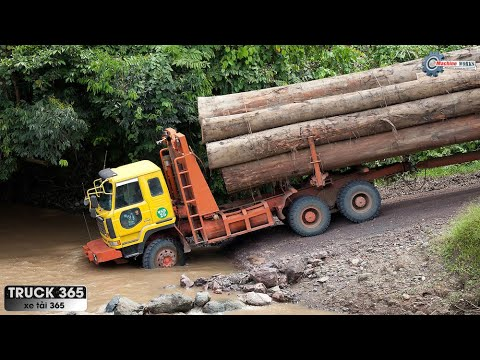 Download Awesome Machines - Awesome Biggest Heavy Wood Truck Transport Hard