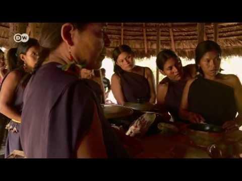 Mascha Kauka in Amazonia | In Focus