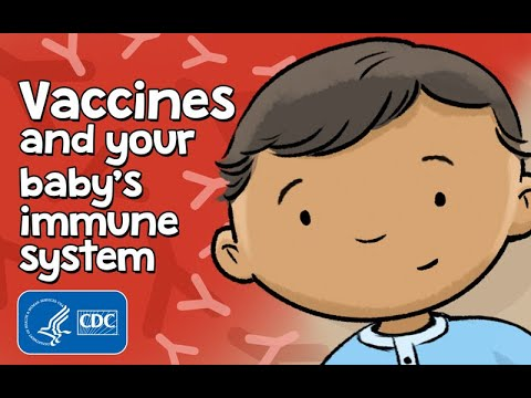 How do vaccines help babies fight infections? | How Vaccines Work