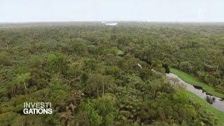 Investigations - Amazonie : la guerre est declaree