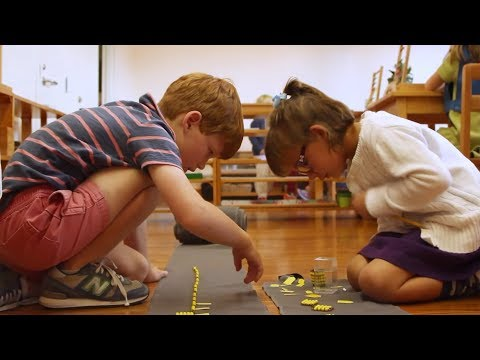 A Montessori Journey from the Start | Forest Bluff School