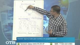 Как правильно составить генеалогическое древо? (27.05.14)