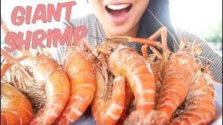 Grill Giant Prawns MUKBANG *Lets Eat* | SAS-ASMR