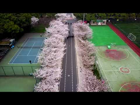 Tongji University Video Guide_Shanghai Tongji University From Above_DJI Mavic Pro
