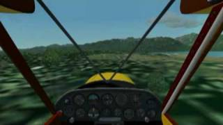 Summer Super Cub Flight