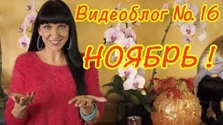 Игры Барби и Монстр (Монстер) Хай PlayLAPLay Видеоблог16 - Ноябрь!