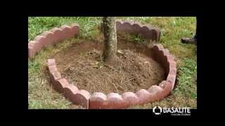 How To Build A Tree Ring