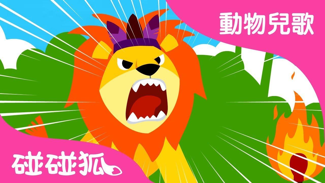 動物之王獅子 | 動物兒歌 | 碰碰狐pinkfong!兒童兒歌