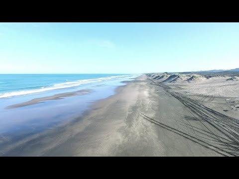 Driving Muriwai beach and finding your spot