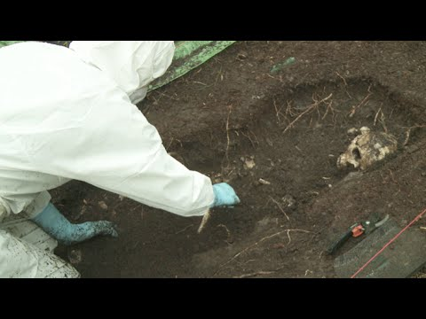 How are forensic remains exposed & recovered?