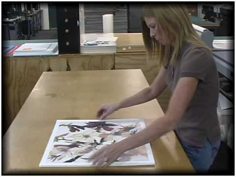 mounting your artwork for diy and custom framing with american frame - Diy Custom Framing
