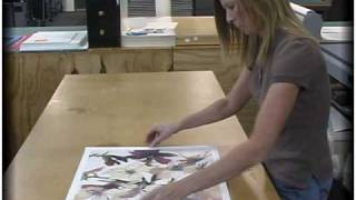 Mounting Your Artwork For Diy And Custom Framing With American Frame