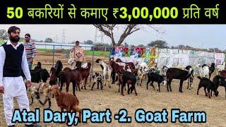 Atal Dairy Farm  || Buffalo Farming  || Goat Farming || Poultry Farming. Part - 2 - Goat Farm