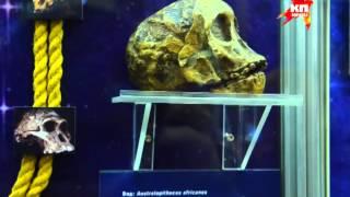 видео Ночь музеев в Биологическом музее им. К. А. Тимирязева