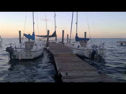 1 Hour of Relaxing Ocean Sounds - Masts Squeaking, Seagulls Chirping, Waves Rocking Docked Boats