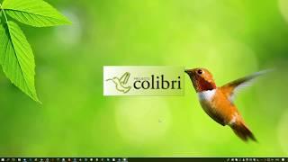 Projecto Colibri RCP12 - Pesquisa avançada