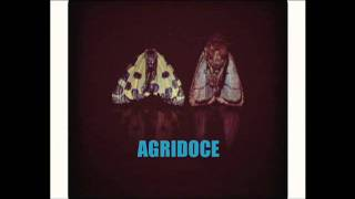 Agridoce - Upside Down