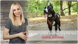 Hand Painted Attack Training Leather Dog Harness - Review