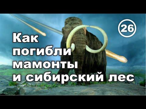 Гибель мамонтов и сибирского леса. Что скрывают ученые. Фильм 26