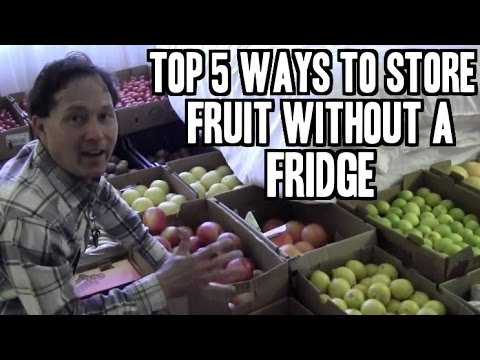 How you can Store Summer time Vegetables and fruit