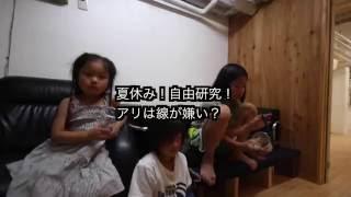 やすちゃんねる http://www.ychan.click Youtube https://goo.gl/qTLYUD...