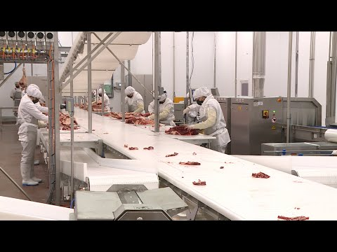 В Минераловодском округе открылся комбинат по переработке мяса